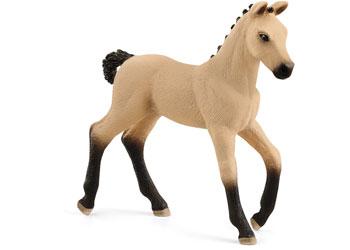 Hanoverian Foal Red Dun