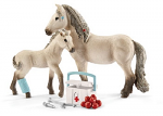 Horse Club - Hannah's First Aid Kit