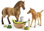 Horse Club - Sarah's Baby Animal Care
